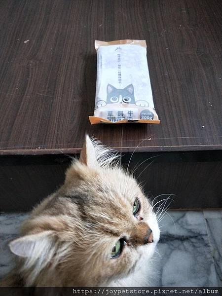 汪喵-牛肉生食_181027_0051.jpg