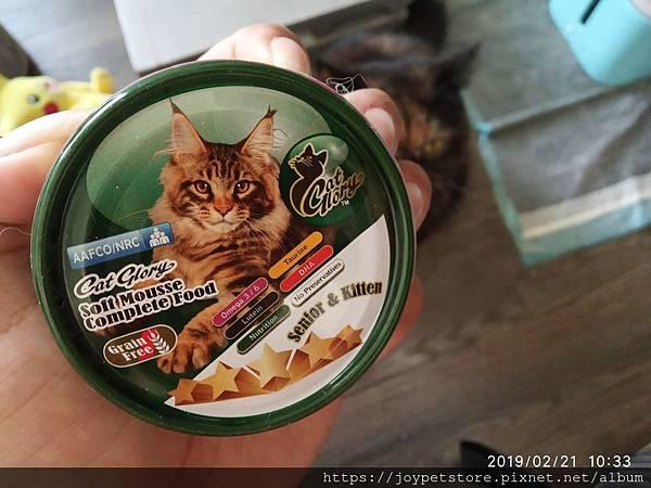 驕傲貓幼貓罐-雞肉+鮭魚85g_190222_0022.jpg
