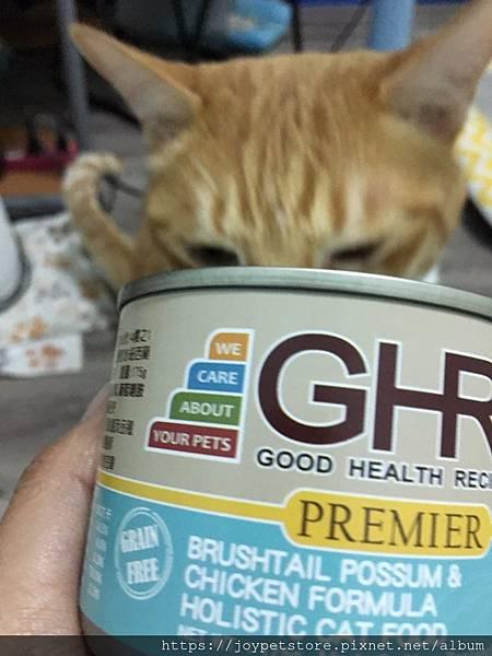 GHR健康主義刷尾負鼠肉雞肉_190509_0034.jpg