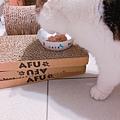 汪喵-老貓銀養主食罐-鮭魚雞肉_190515_0002.jpg