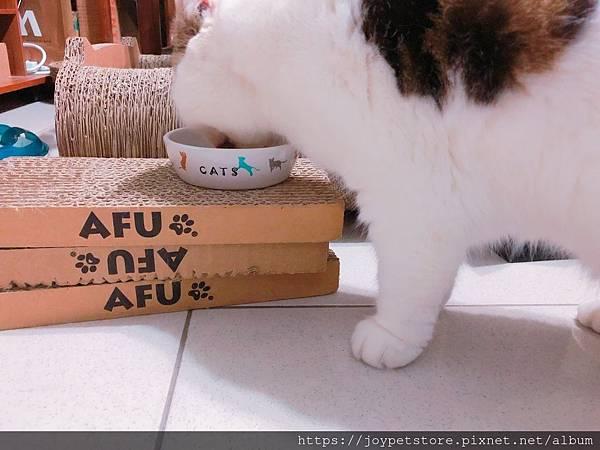 汪喵-老貓銀養主食罐-鮭魚雞肉_190515_0005.jpg