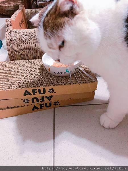 汪喵-老貓銀養主食罐-鮭魚雞肉_190515_0007.jpg