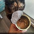 波菲特貓罐-鹿肉+雞肉170g_190526_0018.jpg