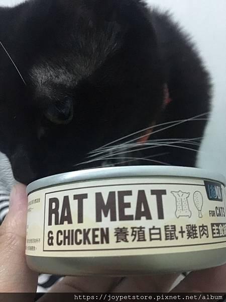 怪獸部落野味貓罐-養殖白鼠_190909_0040.jpg
