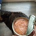 凱茲貓罐-9號鹿肉200g_190919_0044.jpg