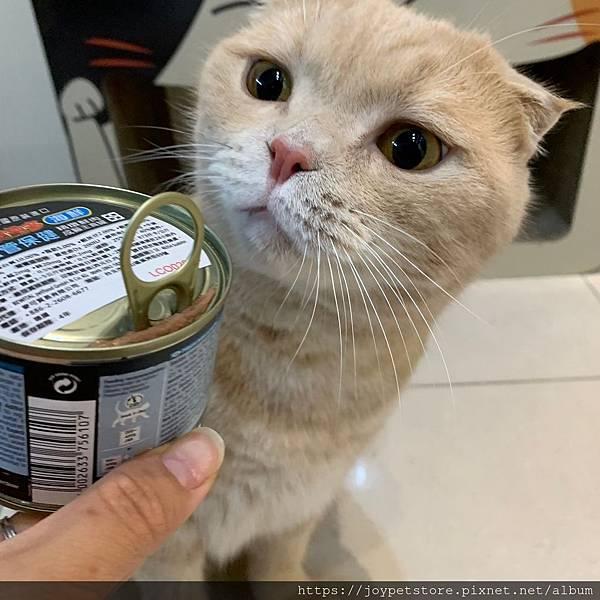 里奧納多貓罐-海鮮_190924_0073.jpg
