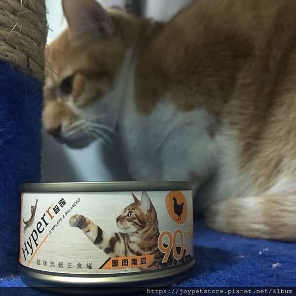 HYPERR超躍貓咪主食罐-雞肉南瓜_191117_0029.jpg