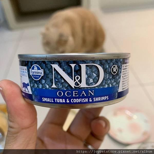 法米納海洋罐8@小鮪魚鱈魚蝦肉_191122_0057.jpg