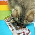 貓咪午茶時刻-鯖魚排_191203_0025.jpg