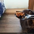 樂透貓咪餐盒-腎臟保健鴨肉100g_191207_0015.jpg