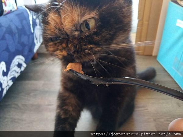 樂透貓咪餐盒-腎臟保健鴨肉100g_191207_0013.jpg