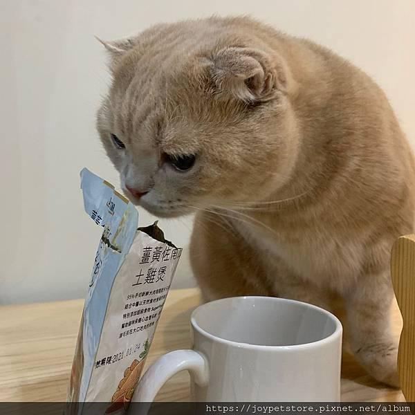 汪喵星球貓餐包薑黃佐南瓜土雞煲_191207_0022.jpg