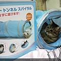 貓壹-奇幻隧道(藍)_200106_0006.jpg