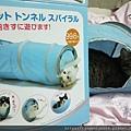 貓壹-奇幻隧道(藍)_200106_0008.jpg