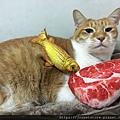 法米納幼貓海洋-鱈魚蝦肉南瓜_200204_0002.jpg
