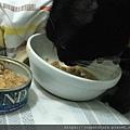 法米納幼貓海洋-鱈魚蝦肉南瓜_200204_0012.jpg