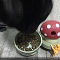 L'CHIC CA-TUMBLE不倒翁漏食玩具-紅蘑菇_200117_0036.jpg