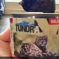 TUNDRA貓罐-野兔+雞肉200g_200425_0066.jpg
