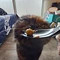 原點主食貓罐-皇極鮮雞3oz_200425_0014.jpg