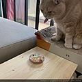 kakato卡格餐食罐(雞、牛肉絲)_200602_0023.jpg