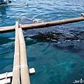 與鯨鯊共遊_180914_0020.jpg