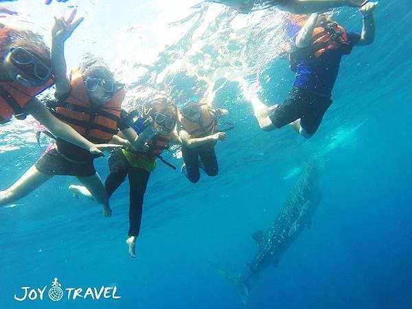 與鯨鯊共遊_180913_0008.jpg