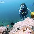 明多洛潛水團照片區~歡迎大家領取_181217_0048.jpg