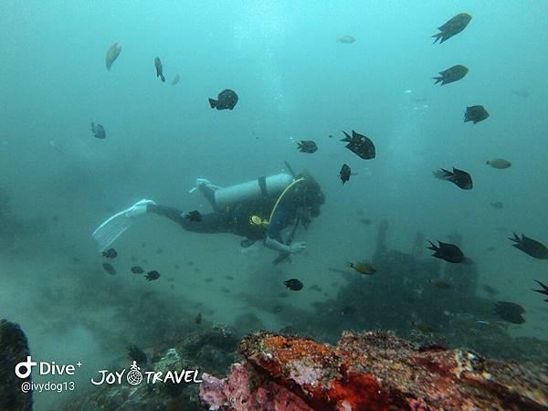明多洛潛水團照片區~歡迎大家領取_181217_0159.jpg