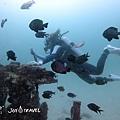 明多洛潛水團照片區~歡迎大家領取_181217_0196.jpg