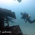 明多洛潛水團照片區~歡迎大家領取_181217_0104.jpg