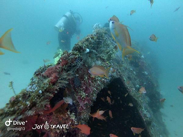 明多洛潛水團照片區~歡迎大家領取_181217_0128.jpg