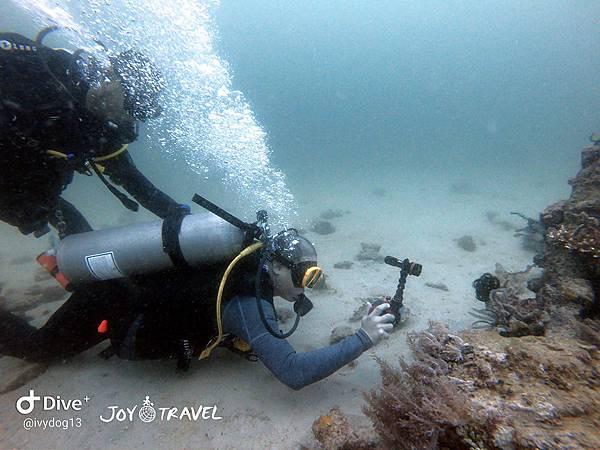 明多洛潛水團照片區~歡迎大家領取_181217_0138.jpg