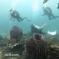 明多洛潛水團照片區~歡迎大家領取_181217_0628.jpg