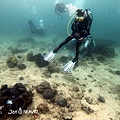 明多洛潛水團照片區~歡迎大家領取_181217_0643.jpg