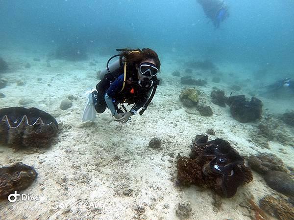 明多洛潛水團照片區~歡迎大家領取_181217_0647.jpg