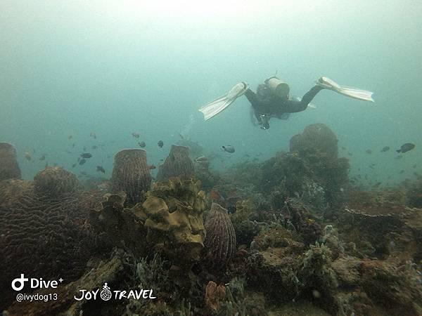 明多洛潛水團照片區~歡迎大家領取_181217_0637.jpg