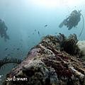 明多洛潛水團照片區~歡迎大家領取_181217_0887.jpg
