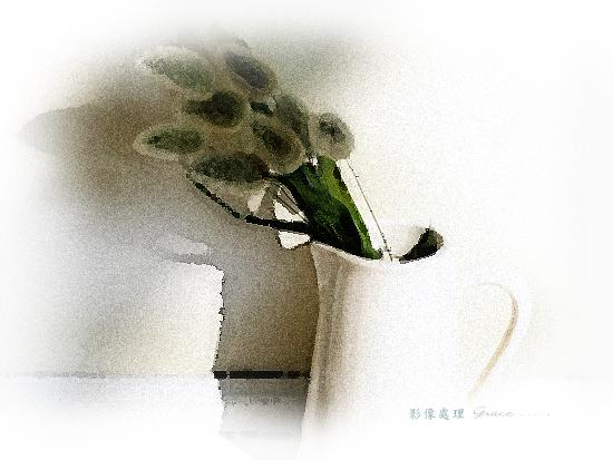 house_2005.jpg
