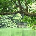 tn_湖景10.JPG