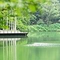 tn_湖景13.JPG