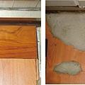地板被白蟻吃了怎麼辦.jpg