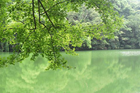 tn_湖景11.JPG