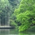 tn_湖景14.JPG