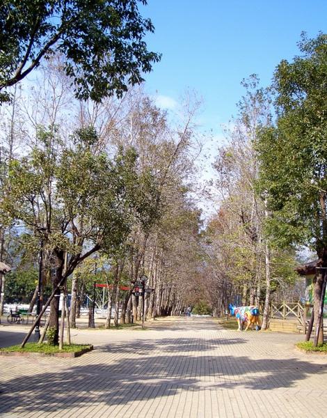 20091205-06-台東恩典家 (5).JPG