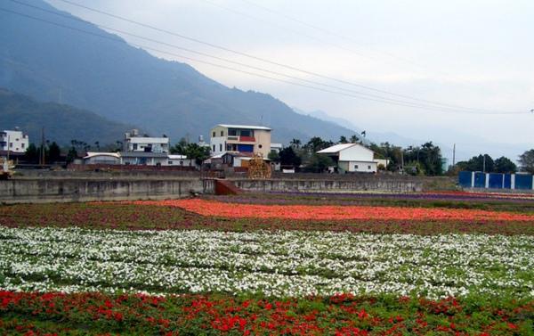 20091205-06-台東恩典家 (51).JPG