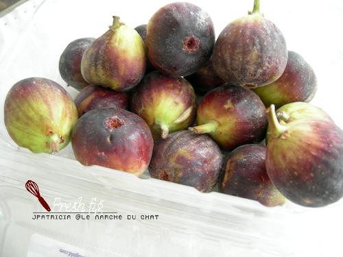 dry-fig1