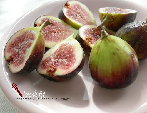dry-fig6