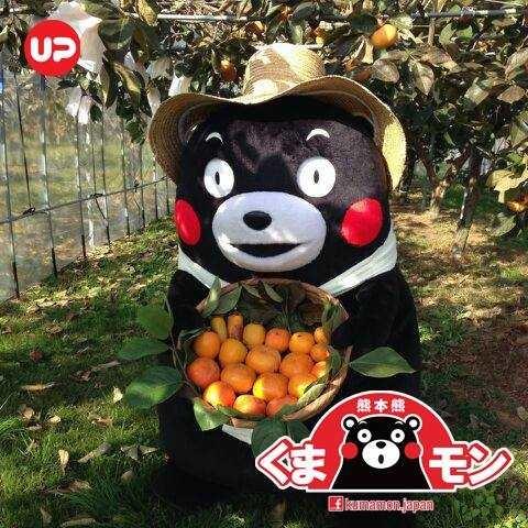 【眼罩貼推薦】超Q熊本熊限定 日本第一吉祥物公務員帶來紓解疲勞小幫手 發熱眼罩貼