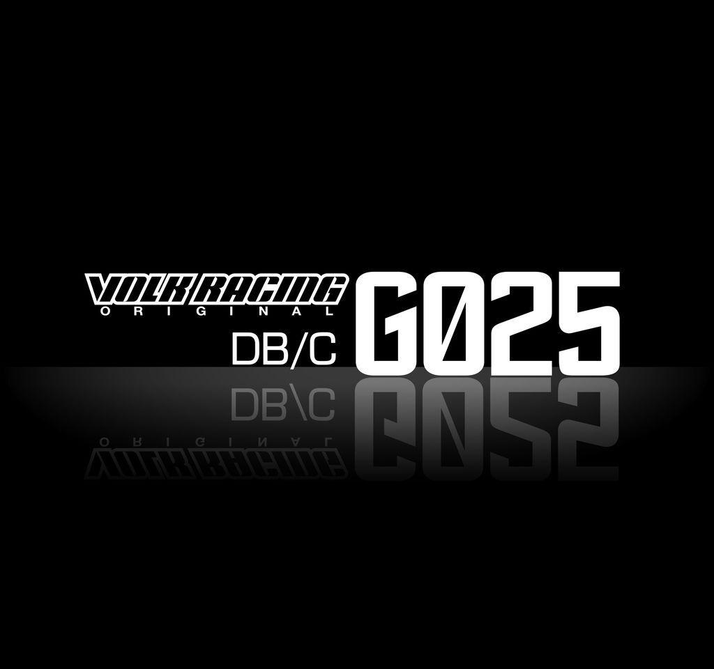 G025_LD logo.jpg