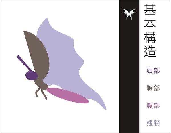 刺蝶 - 7.jpg